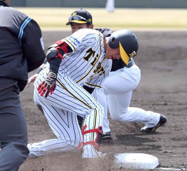 タイガース 練習 結果 阪神 試合